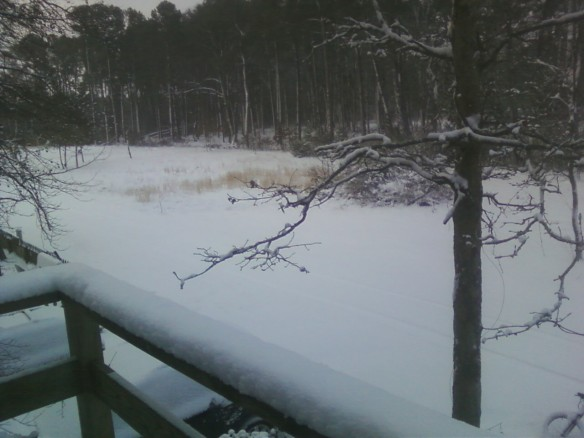 No Limits eastern Shore will be closed on Thursday, 1/24/13, due to the winter weather.