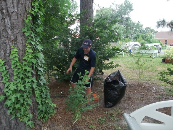 "Youth Works again here doing some yard work!  They place looks great!!  ""Hope they come back!!""- Zel"