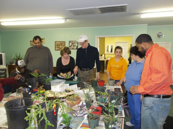 Work on people, work on! Cleaning up our indoor plants.