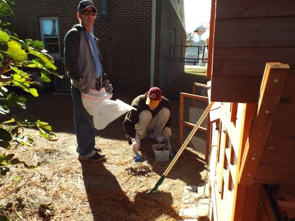 Chicken coop clean-up!