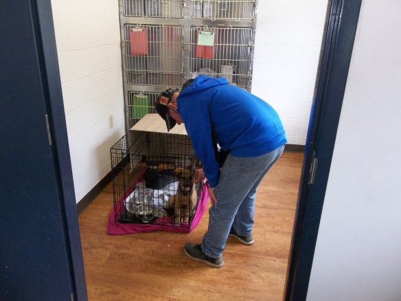 David met a puppy at Animal Control while delivering dog biscuits