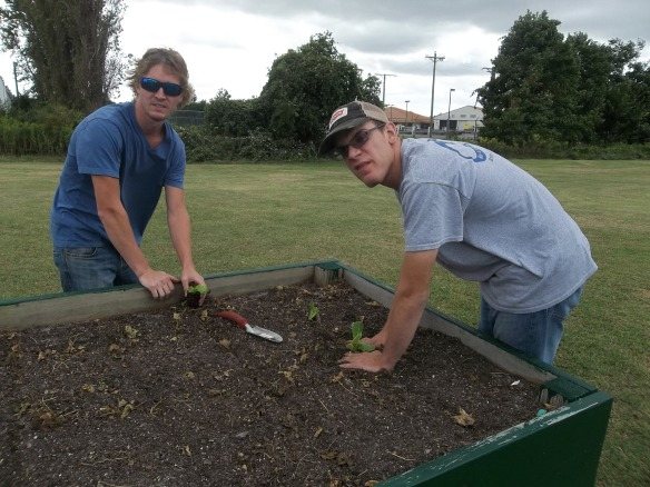 Plant on, men, plant on!! Brandon and Kyle putting in lettuce for our fall garden!